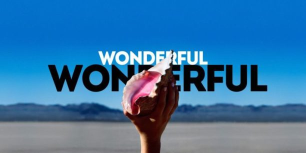 "photo illustration based on the ""Wonderful Wonderful"" cover art from The Killers"